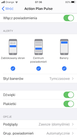 Pushes settings ios pl